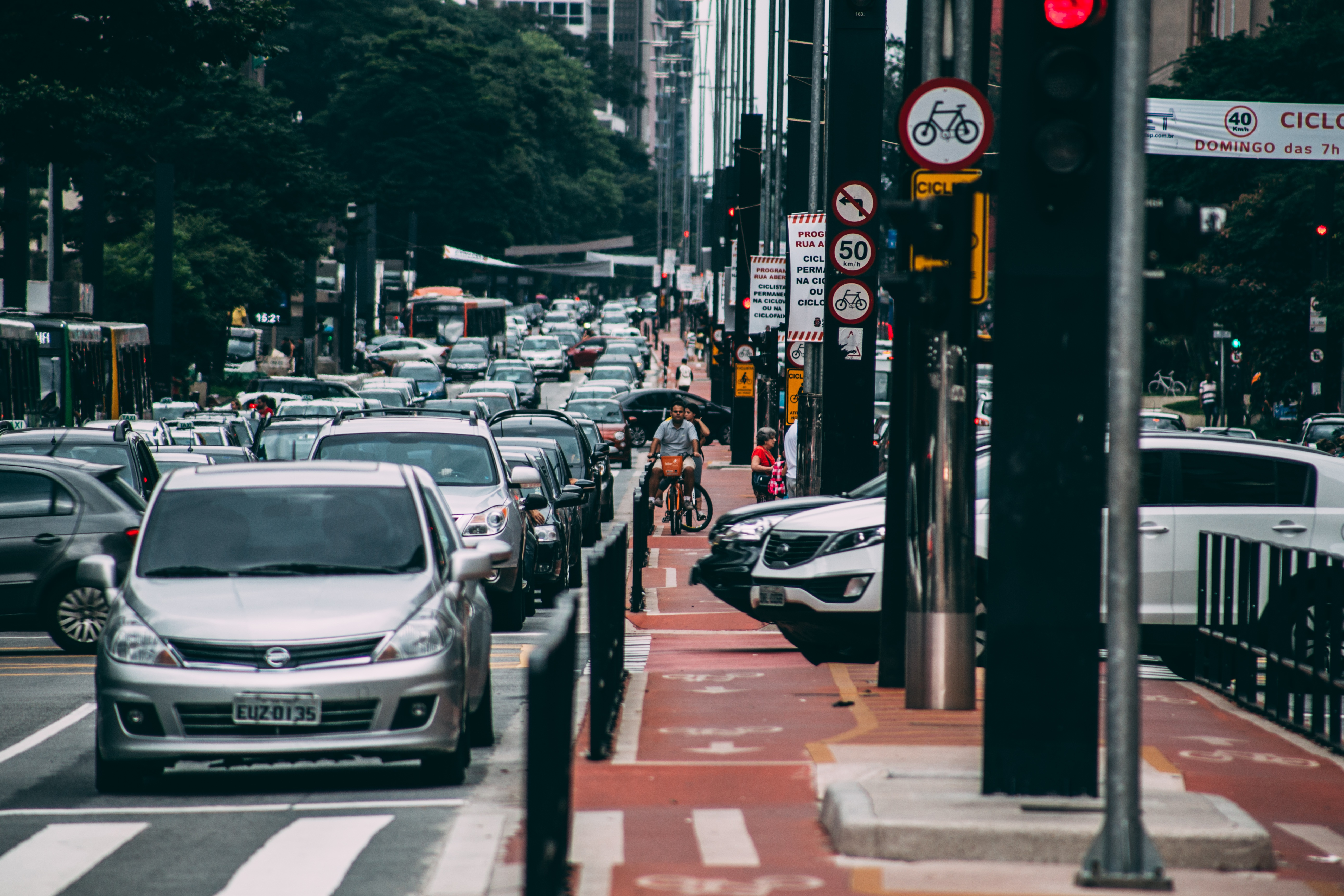 Ariranha - São Paulo
