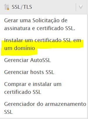 Clique na opção instalar um certificado SSL em um domínio.