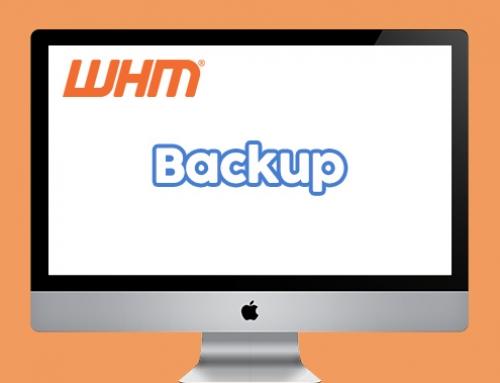 Montar partição de backup no servidor Linux com Web Host Manager